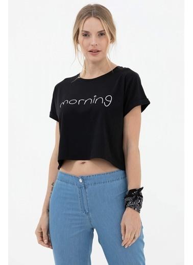 Sementa Baskılı Basic Kısa Tshirt - Siyah Siyah